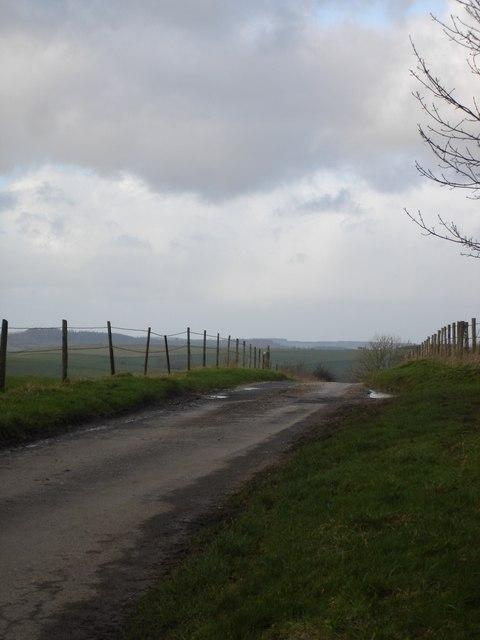 The road to Berwick St John