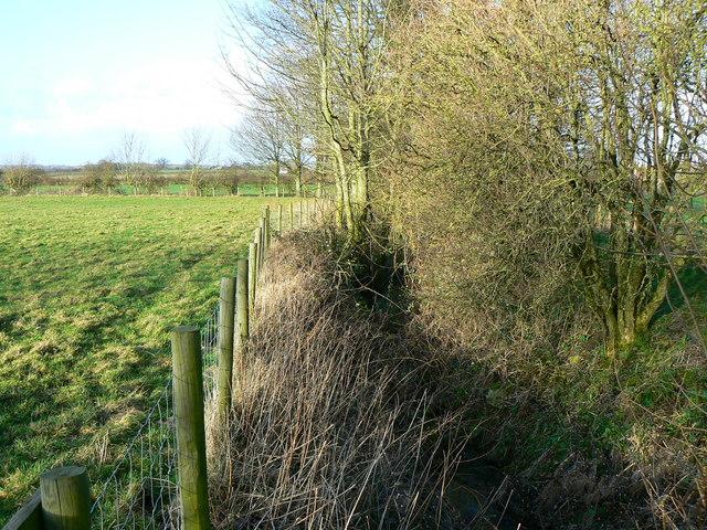 Watercourse (2)
