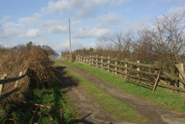Track to Daniels Wood