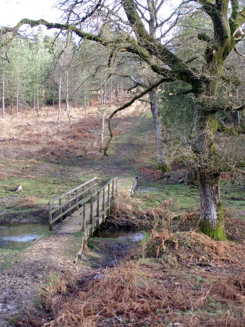Footbridge across Highland Water, New Forest