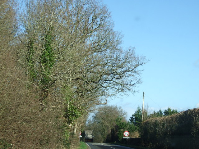 Road into Middlemarsh village