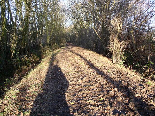 Kingsland Lane, Leavenheath, Suffolk