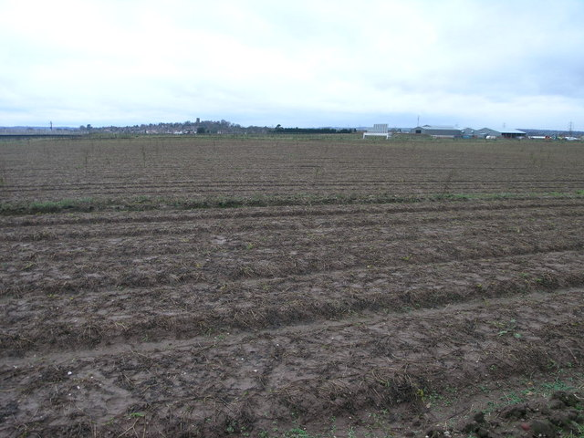 Muddy Field and Toll Road