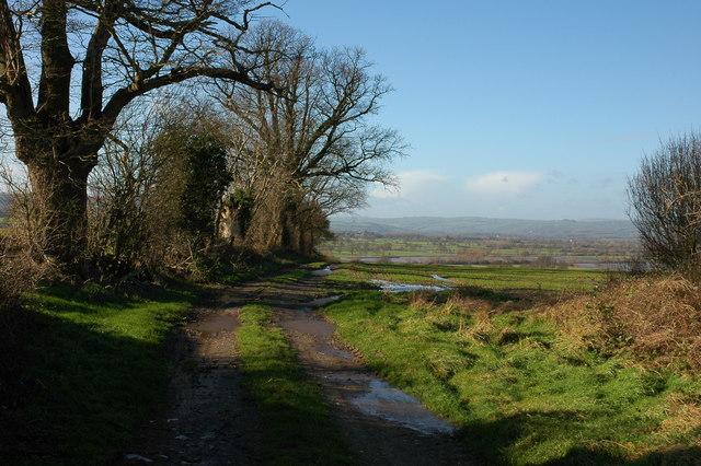 Farm track near Upper Norton