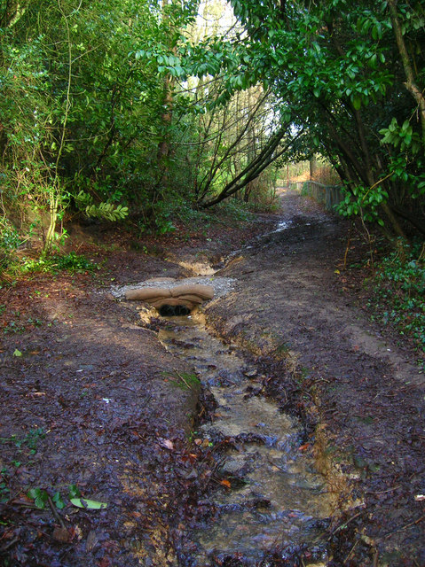 Public Byway, South of Lordswell Lane