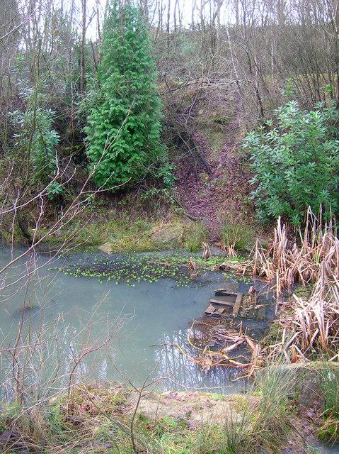 Pond, Jarvis Brook Country Park