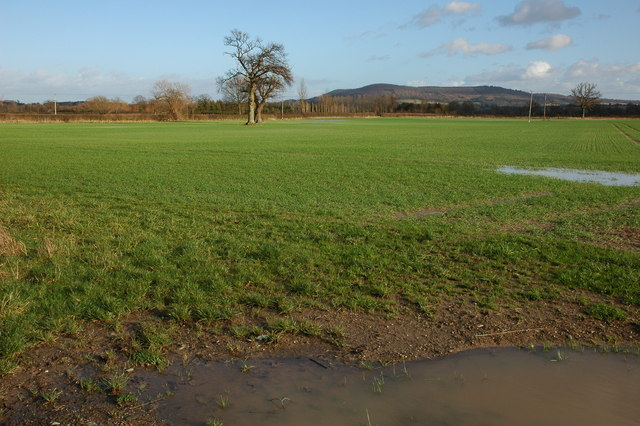 Low lying farmland at Letton