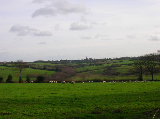 Wealden Landscape