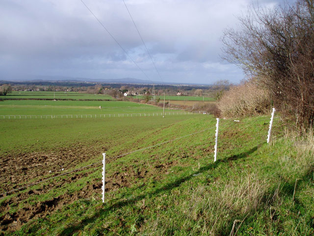Pasture below Frocester Hill