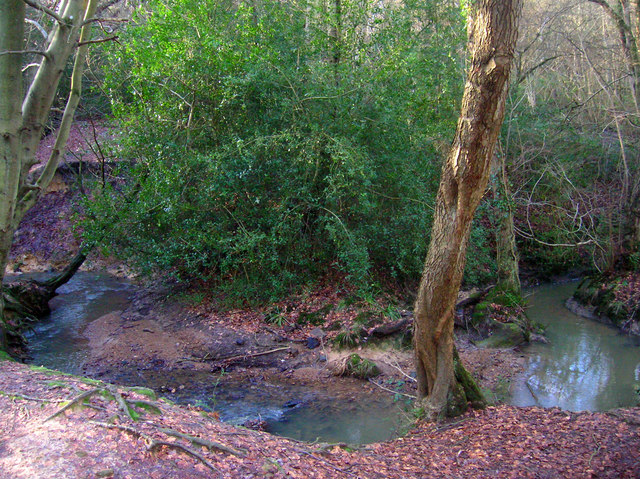 Crowborough Ghyll, Jeffrey's Wood