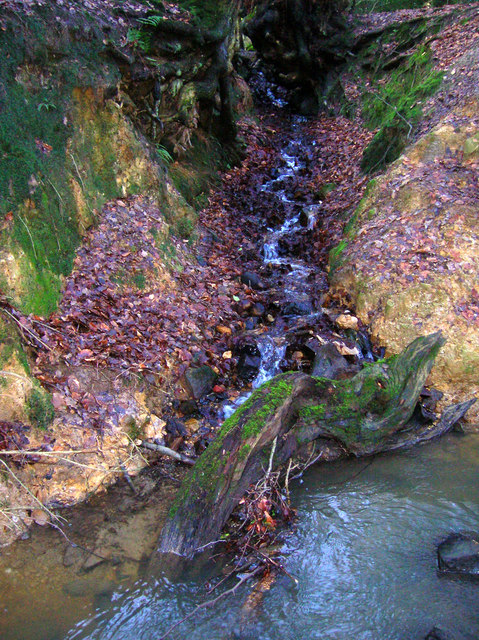 Stream joins Crowborough Ghyll, Jeffrey's Wood