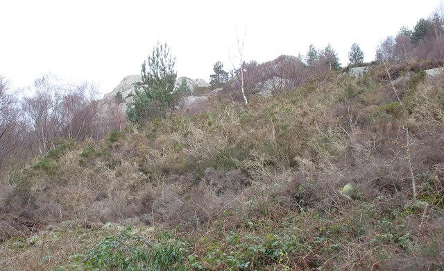 Clegyr - the wild terrain above the Fachwen road