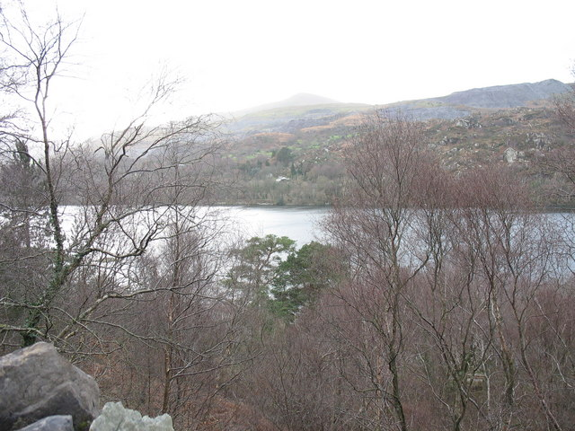 Llyn Padarn through the trees