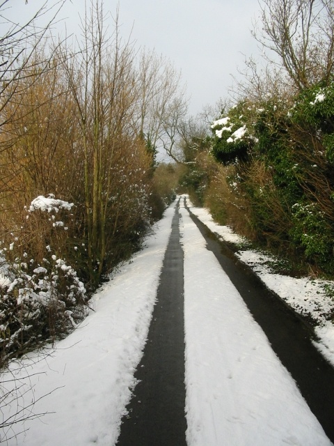 Brambling Road in the snow.