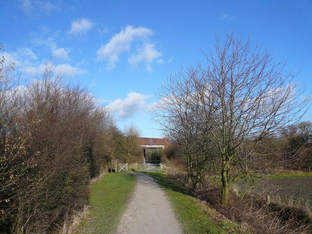 Grassmoor - Birkin Lane Road Bridge
