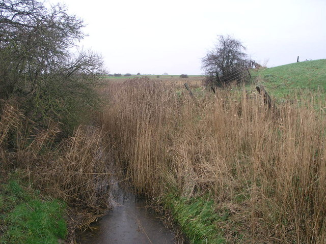 Ditch for the Dike