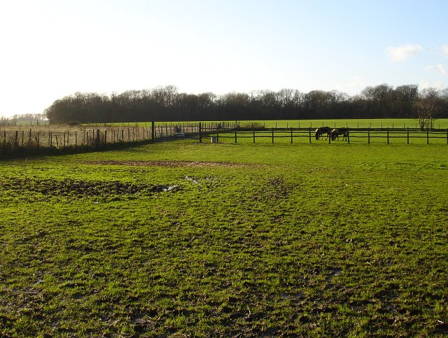 Paddocks near Pollyfield Farm