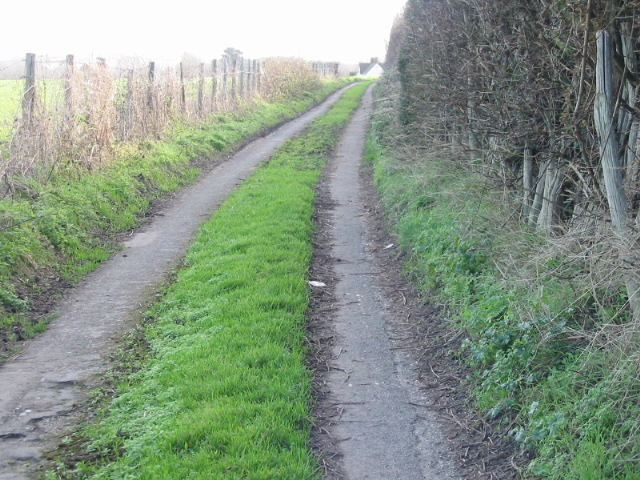 Minor road - needs mowing!