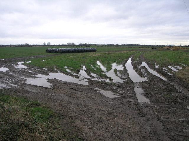 Black Bales and Mud