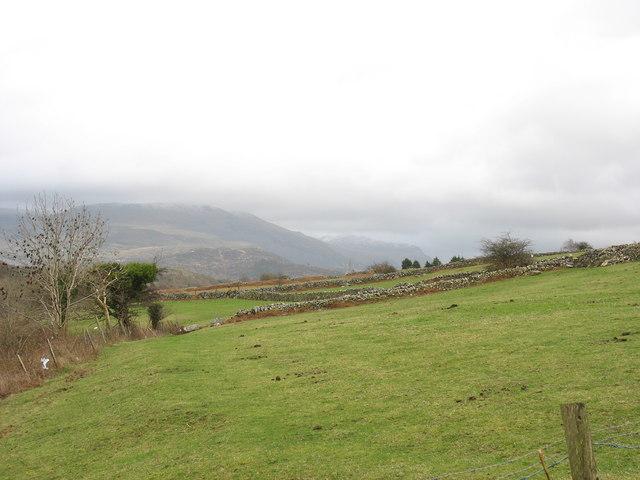 Pastureland at Pen-y-lan