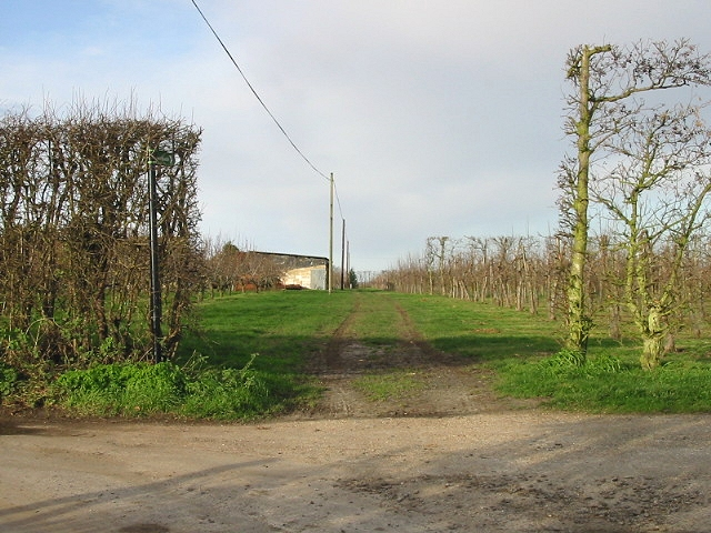 View of orchards and footpath to Preston Road.