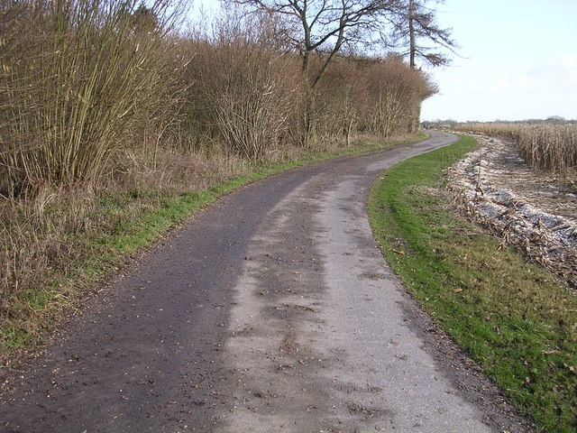 Track to south of Hackwood Copse
