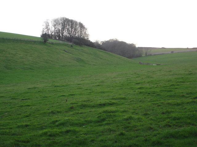 Tollard Green Bottom - north end