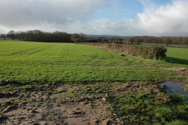 Farmland to the west of the A480