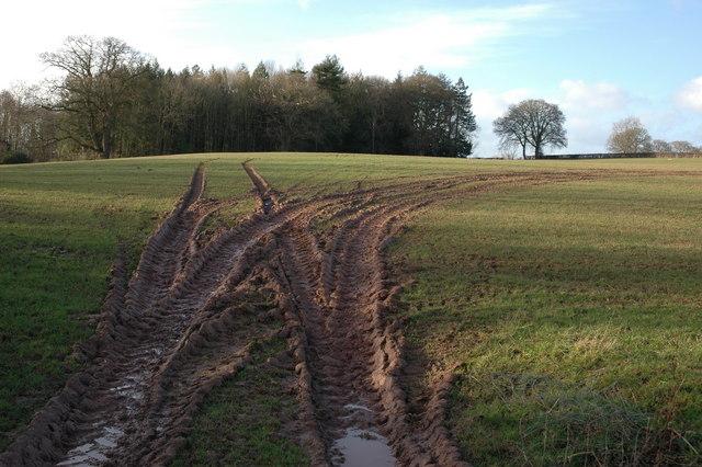 Wet farmland at Sarnesfield