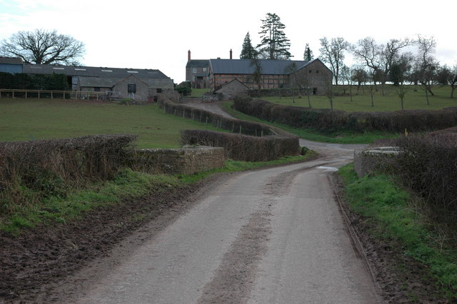 Field's Place, near Dilwyn