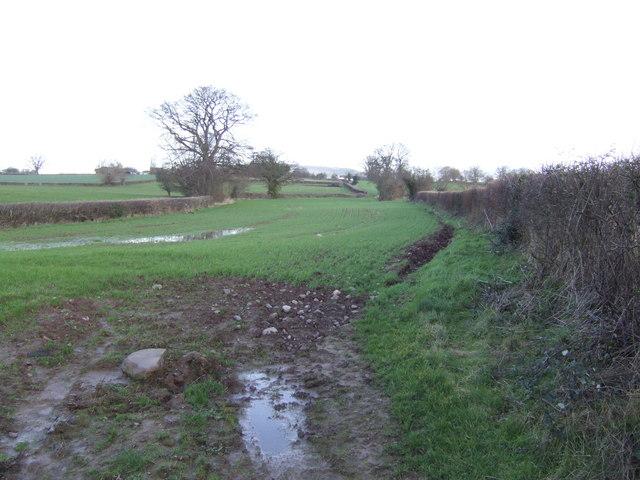 Waterlogged field near Preston-on-Wye