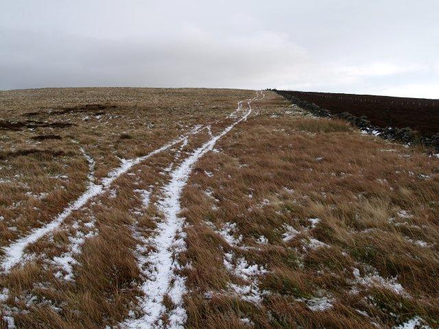 Track, Ferniehirst Hill