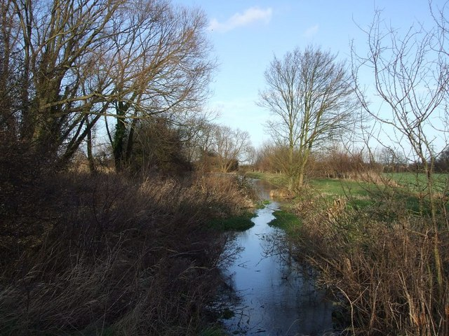 Dammed stream near Great Gap