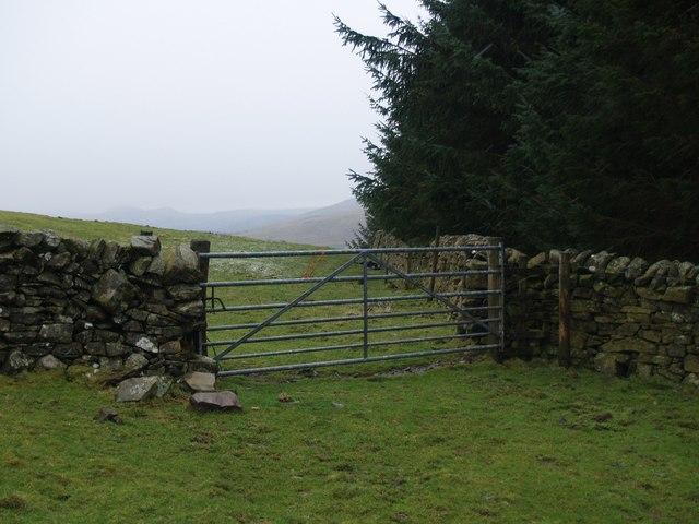 Gate, Bowshank Hill