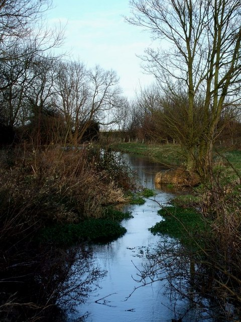 Whistle Brook north of Ivinghoe