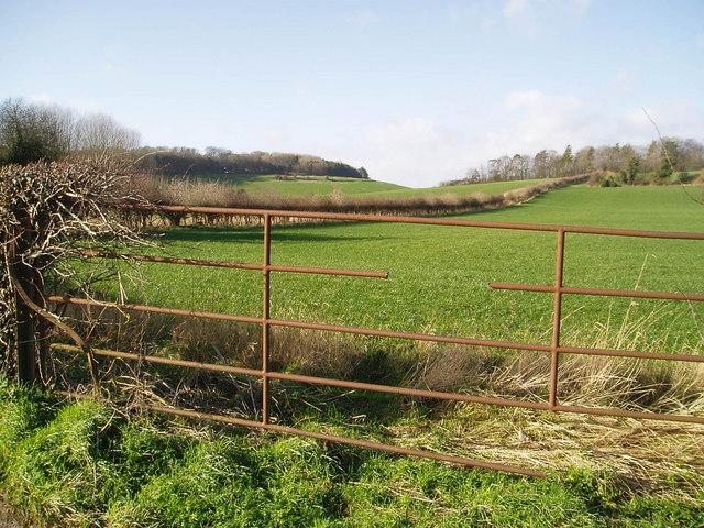 Fields near Fullerton Grange