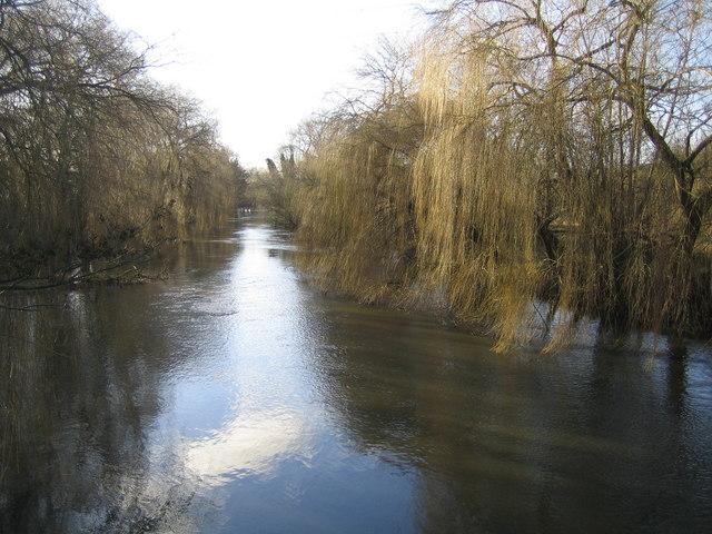 River Colne in Uxbridge Moor