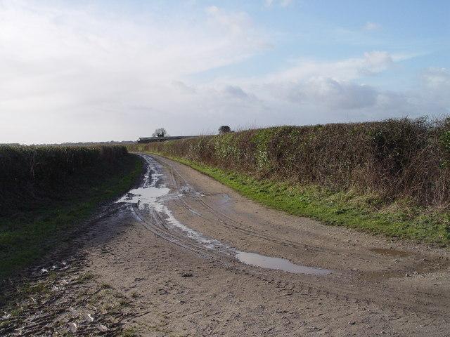 Muddy Lane