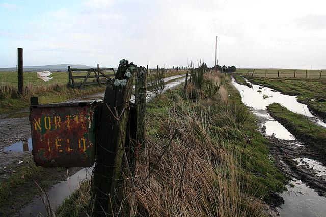 A sodden lane to Northfield Farm.