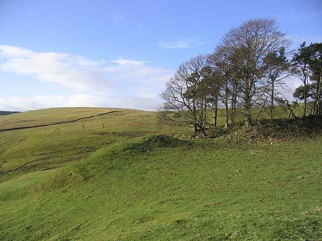 Farmland at Broadlee Hill