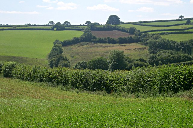 Valley south of the old Callington Road