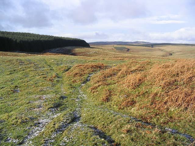 Upland landscape