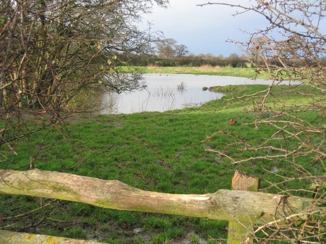 Pond near Hatton Hall