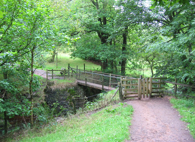 Footbridge over Black Brook