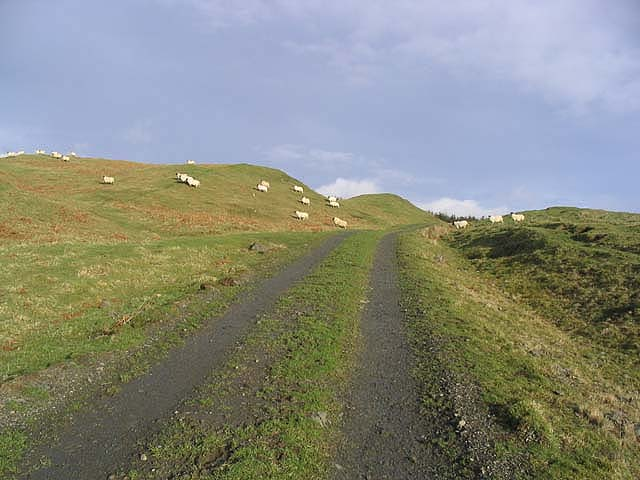 Farm track at Huntly Rig