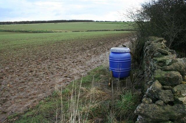 Pheasant Feeder, Ox Pasture Lane