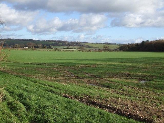 Fields near Fairview Farm