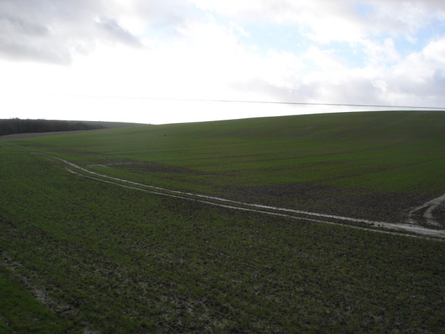 Downland south of Donheads