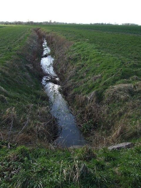 Drainage ditch near Cheddington