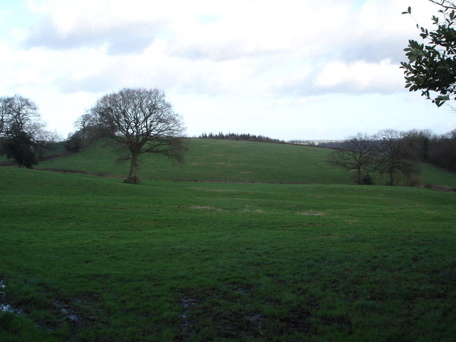 Downland near Donhead St Andrew